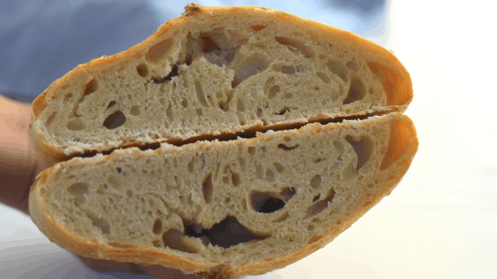 bread made with 24 hour fermented biga